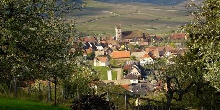 Gites Alsace Vignoble Gites Alsace Vignoble, Gîtes Orschwihr (68)
