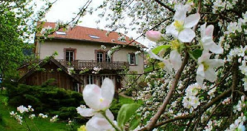 Chambre d'hôtes le P'tit Bonheur, Chambres d`Hôtes Allarmont-Bionville (88)