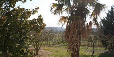 Domaine du Mayne Domaine du Mayne à proximité de St-Emilion & Bordeaux, Chambres d`Hôtes Frontenac (33)
