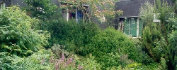 Gite Les Gîtes du Chêne-Vert
