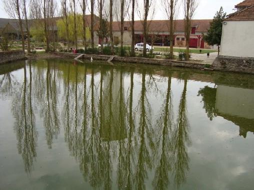 Ferme de La Douairiere, Chambres d`Hôtes Cernay La Ville (78)