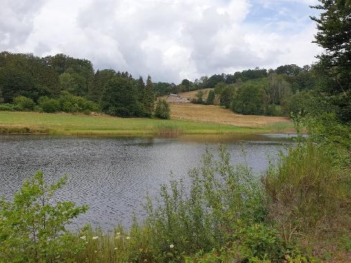 Ferme de la Jonchée, Chambres d`Hôtes Amont Et Effreney (70)