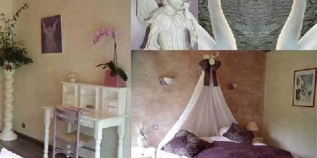 Les Cygnes Les Cygnes, Chambres d`Hôtes Gaillan (33)