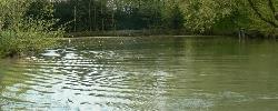 Chambre d'hotes La Maison de l'étang