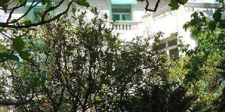 Villa l'Eglantier Villa l'Eglantier, Chambres d`Hôtes Cannes (06)