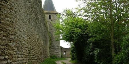 Le Vieux Château Le Vieux Château, Chambres d`Hôtes Airvault (79)