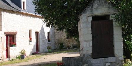 Gite La Poitevinière > La Poiteviniere Gîte Rural Et Gîte équestre Saumur, Chambres d`Hôtes Neuille (49)