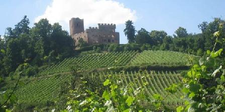 Les Gites du Relais des Vignes Les Gites du Relais des Vignes, Gîtes Kintzheim (67)