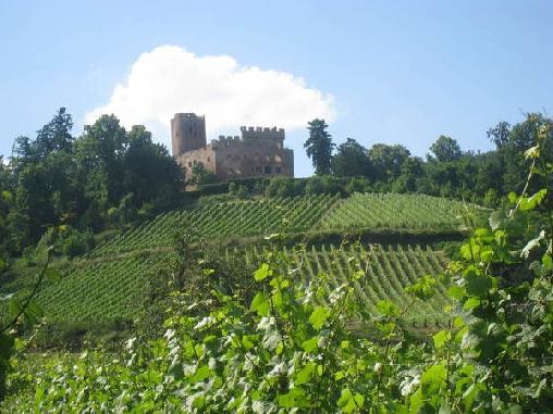 Les Gites du Relais des Vignes, Gîtes Kintzheim (67)