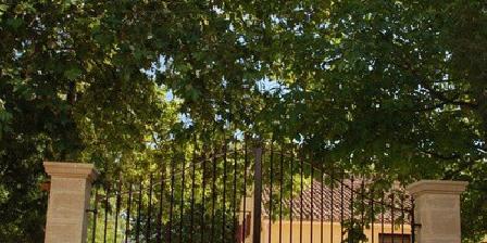 Le Mas de la Sauline Le Mas de la Sauline, Chambres d`Hôtes La Roque D'Antheron (13)
