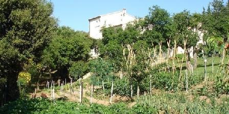 Villa La Calcine Villa La Calcine, Chambres d`Hôtes Llauro (66)