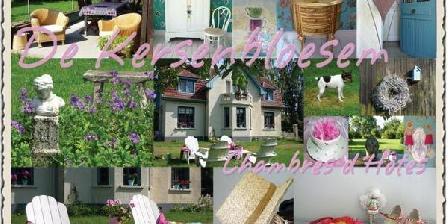 De Kersenbloesem De Kersenbloesem (the Cherry Blossom), Chambres d`Hôtes Colonfay (02)