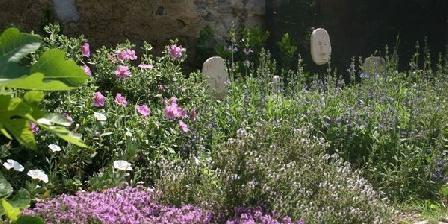 La Rose La Rose, Chambres d`Hôtes Saint Gervasy (30)