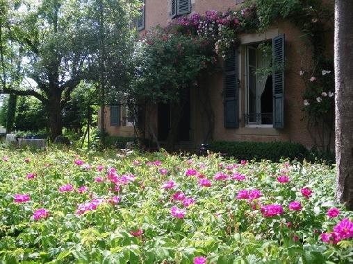 Chambre d'hote Haute-Saône - La Maison des Buis, Chambres d`Hôtes Vy Les Lure (70)