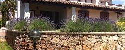 Gite Villa Lily