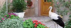 Chambre d'hotes Gite Cigogne D'Alsace