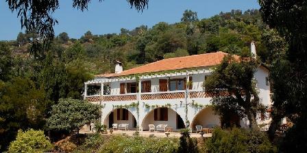 Villa du Plageron : Ein gästezimmer im Var im Provence Alpes Cote d ...