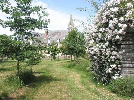 Chambre d'hote Maine-et-Loire - La Grange du Plessis, Chambres d`Hôtes Segré (49)