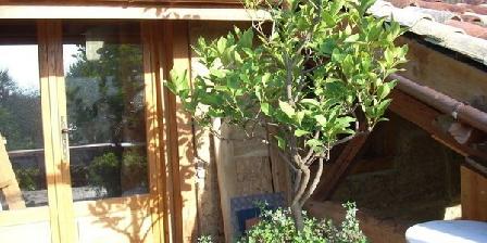 le cerisier blanc un gite en sa ne et loire en bourgogne accueil. Black Bedroom Furniture Sets. Home Design Ideas