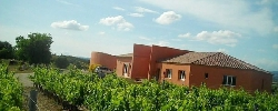 Chambre d'hotes O'Vineyards