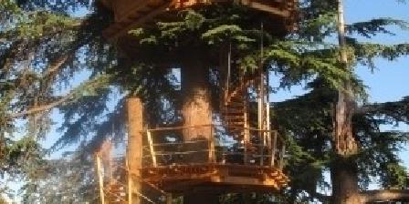 Sur un Arbre Perché Sur Un Arbre Perché - Cabanes dans Les Arbres dans Le 17, Chambres d`Hôtes Pons (17)