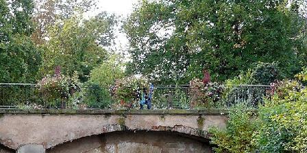 Gîte de la Niederau Gite de la Niederau, Gîtes Colmar (68)