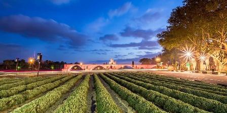 Gîte la Valentine Pont d'Avignon
