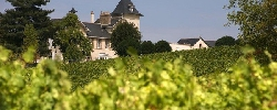 Bed and breakfast Château Soucherie