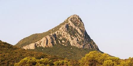La Cazarelle Pic Saint-Loup