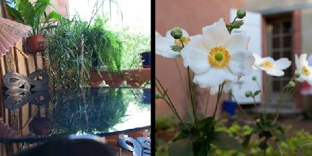 Chez Patricia et Jacme Montauban GuestHouse Chez Patricia & Jacme, Chambres d`Hôtes Montauban (82)