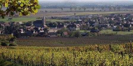 Gîte-Halmer Le village vu du vignoble