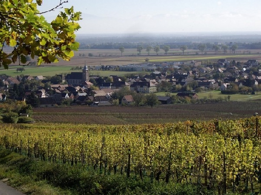 Le village vu du vignoble