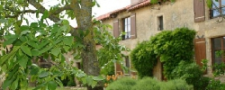 Bed and breakfast Le Mas d'Anjou