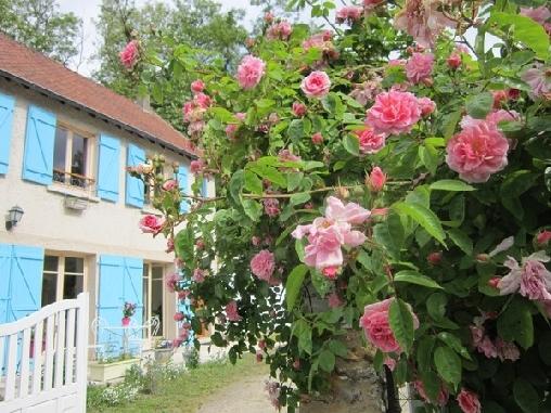 Chambre d'hote Yvelines - Le Moulin à Vent, Chambres d`Hôtes Montfort L'amaury (78)