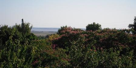 Domaine de L'Estuaire Domaine de L'Estuaire, Chambres d`Hôtes St Thomas De Conac (17)
