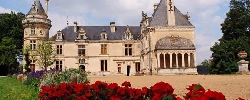 Bed and breakfast Château de La Court D'Aron