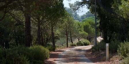 Le Chant des Oliviers Le Chant des Oliviers, Chambres d`Hôtes Trets En Provence (13)