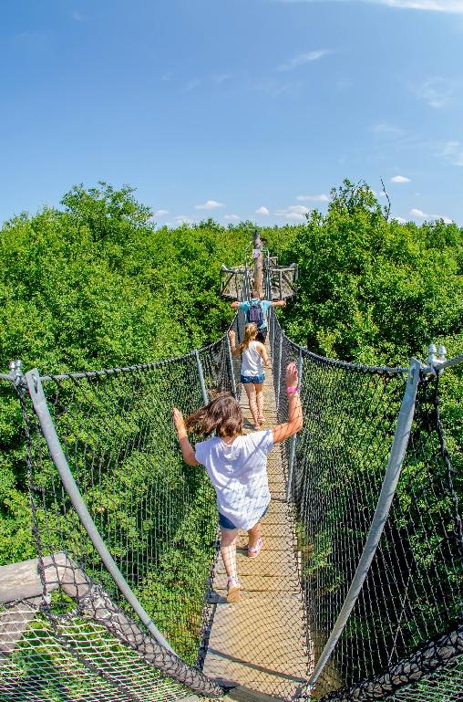 Chambre d'hote Vienne - parc DéfiPlanet'
