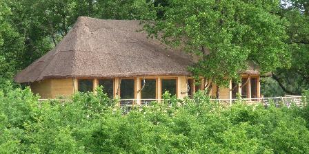 Défiplanet Salle de séminaire dasn les arbres