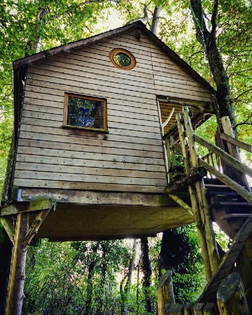 La Cabane aux Secrets Au Milieu de nulle part