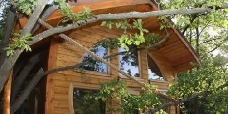 cabane en provence une chambre d 39 hotes dans le vaucluse en provence alpes cote d 39 azur accueil. Black Bedroom Furniture Sets. Home Design Ideas