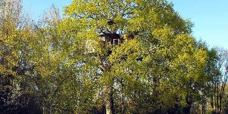 Cabane Perchée du Charron