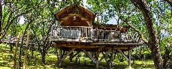 Bed and breakfast Cabane D'amour