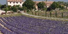 gites Alpes de Haute Provence, 430€+