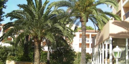2 Pièces à Juan-les-pins Park with palm trees