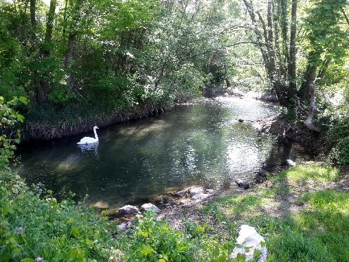 Notre bord de rivière