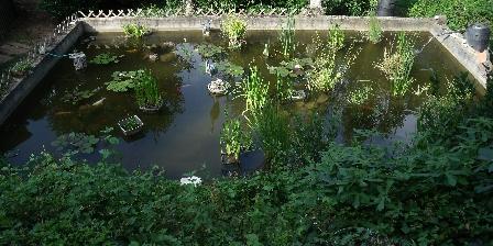 Chambres d'hôtes Le Pigeonnier Bassin d'agrément