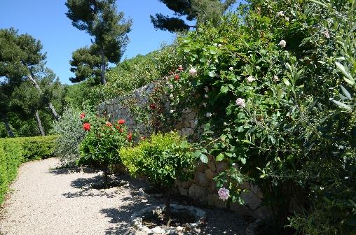 Allée des rosiers