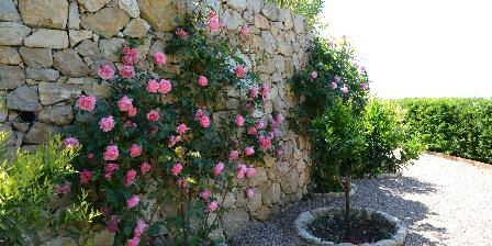 Chambre d'hotes BnB Bastide des Pins > Allée des rosiers