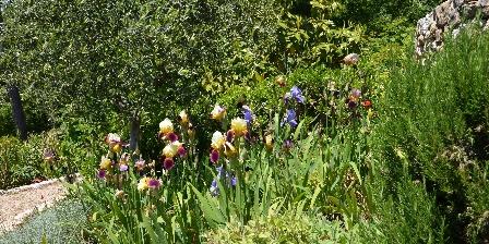 Chambre d'hotes BnB Bastide des Pins > Allée des iris